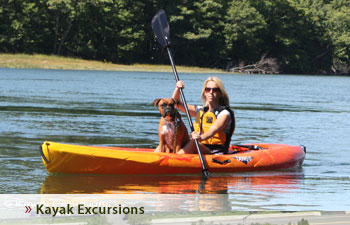 Kayak Excursions