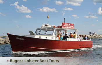 Rugosa Lobster Boat Tours Tours